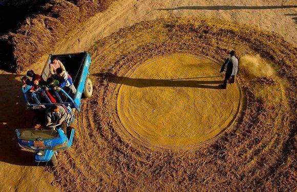 供应链金融助推实体经济发展,希望金融布局三农服务生态圈